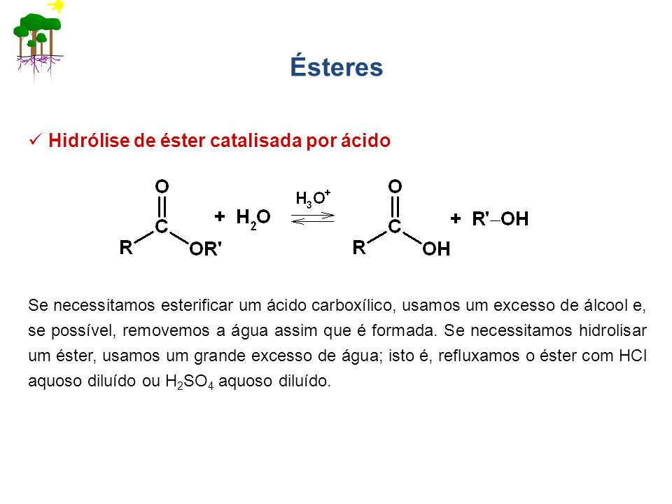 Ésteres Hidrólise de éster catalisada por ácido Se necessitamos esterificar um ácido carboxílico, usamos um excesso de álcool e, se possível, removemo