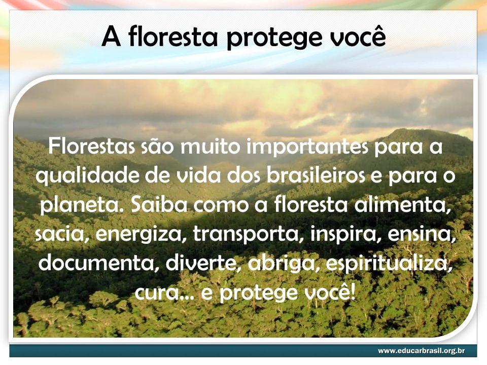 A floresta protege você Florestas são muito importantes para a qualidade de vida dos brasileiros e para o planeta. Saiba como a floresta alimenta, sac