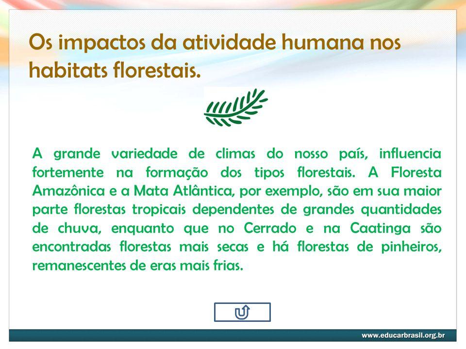 Os impactos da atividade humana nos habitats florestais. A grande variedade de climas do nosso país, influencia fortemente na formação dos tipos flore