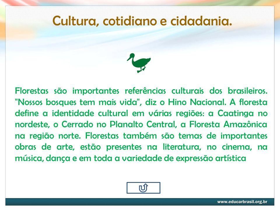 Cultura, cotidiano e cidadania. Florestas são importantes referências culturais dos brasileiros.