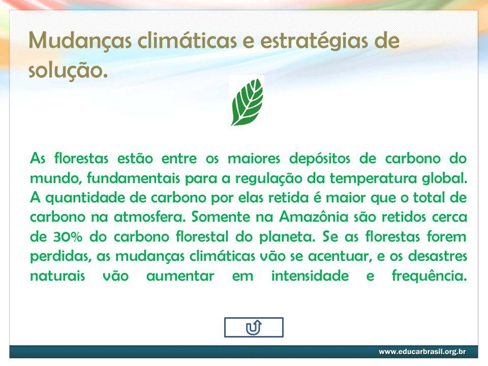 Mudanças climáticas e estratégias de solução. As florestas estão entre os maiores depósitos de carbono do mundo, fundamentais para a regulação da temp
