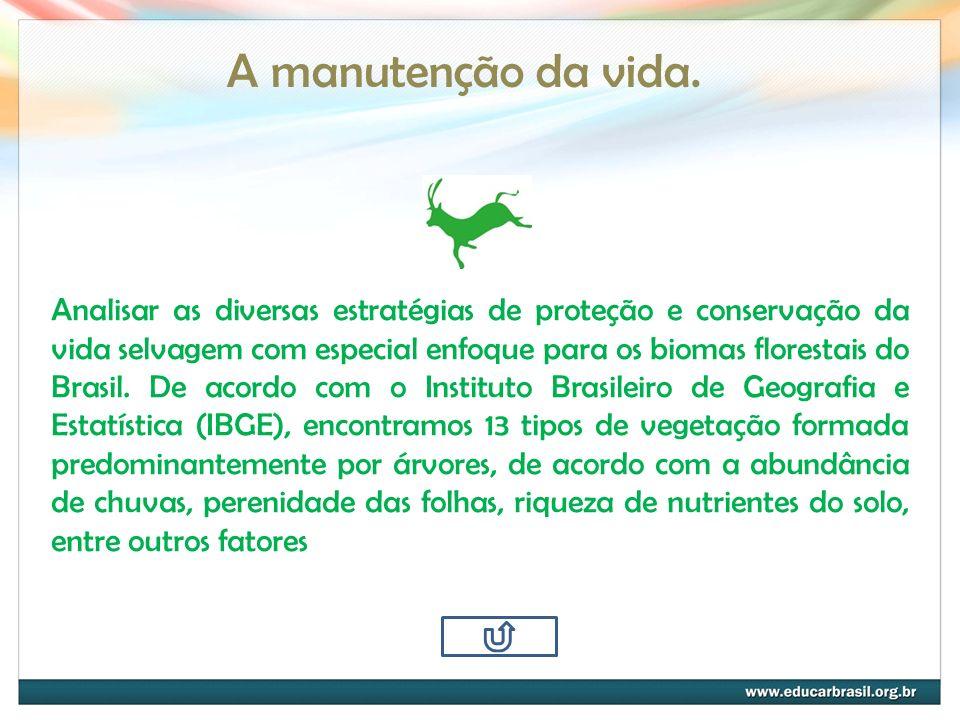 A manutenção da vida. Analisar as diversas estratégias de proteção e conservação da vida selvagem com especial enfoque para os biomas florestais do Br