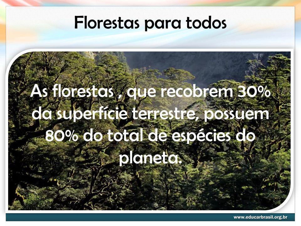 Florestas para todos As florestas, que recobrem 30% da superfície terrestre, possuem 80% do total de espécies do planeta.