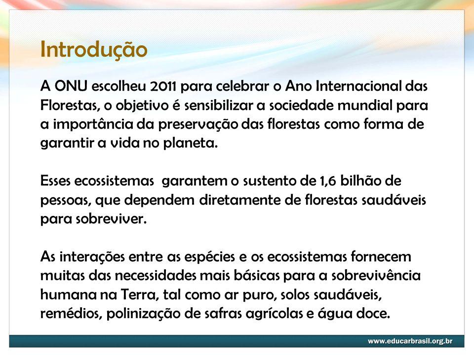 A ONU escolheu 2011 para celebrar o Ano Internacional das Florestas, o objetivo é sensibilizar a sociedade mundial para a importância da preservação d