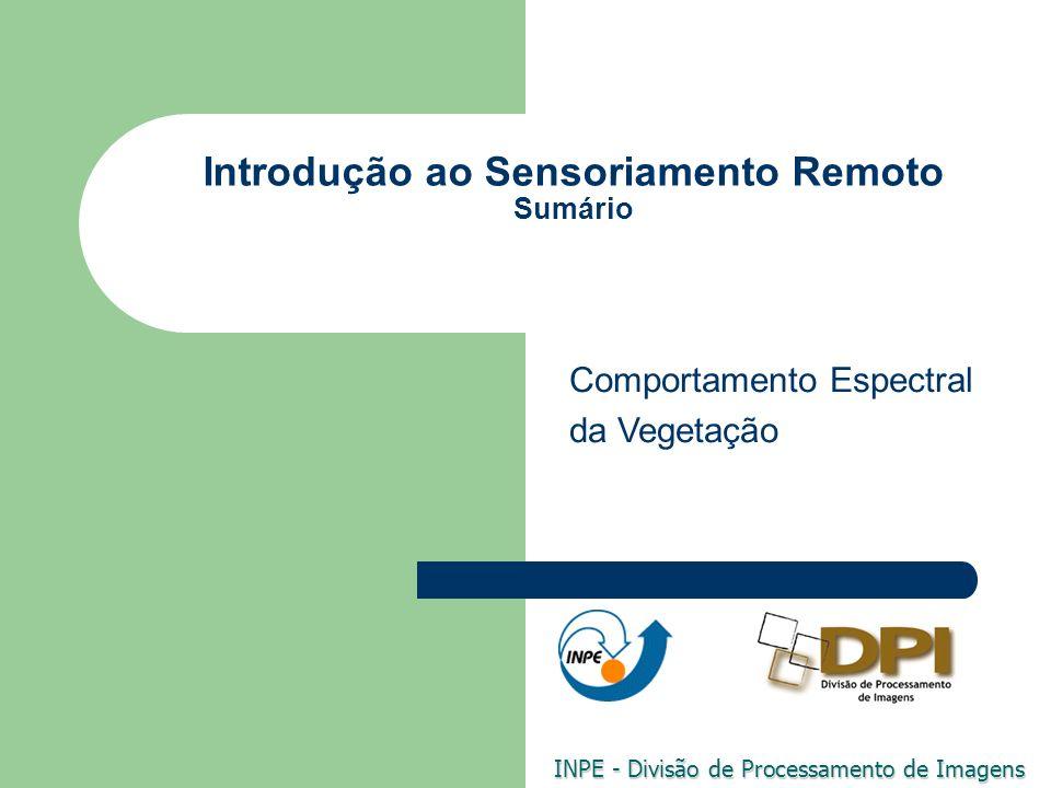 Introdução ao Sensoriamento Remoto Sumário INPE - Divisão de Processamento de Imagens Comportamento Espectral da Vegetação