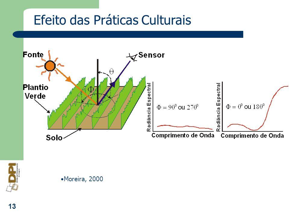 13 Efeito das Práticas Culturais Moreira, 2000