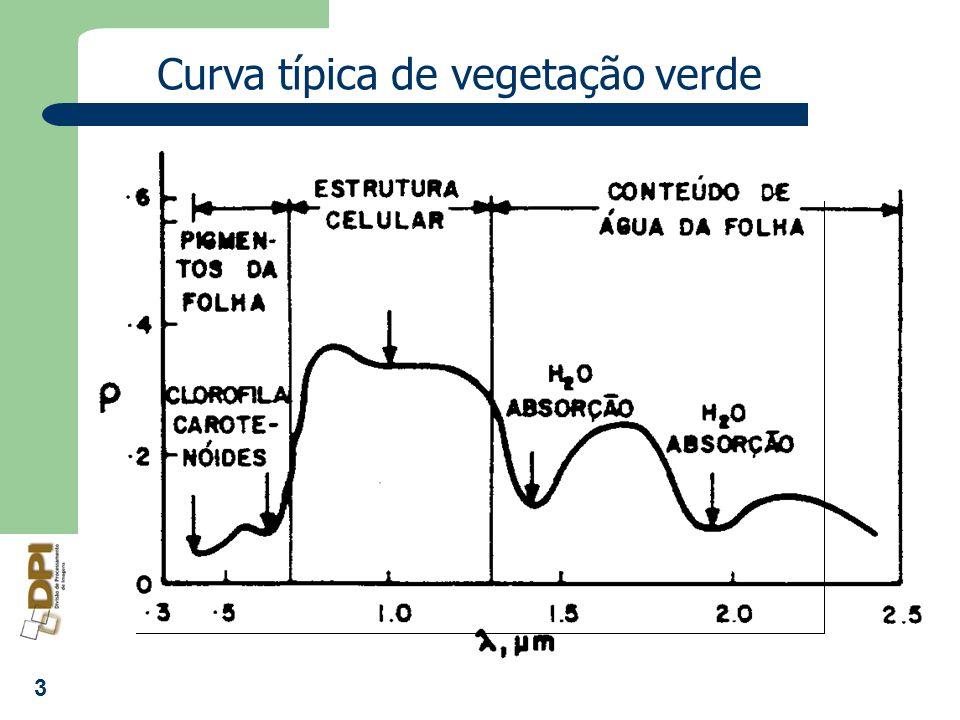 3 Curva típica de vegetação verde