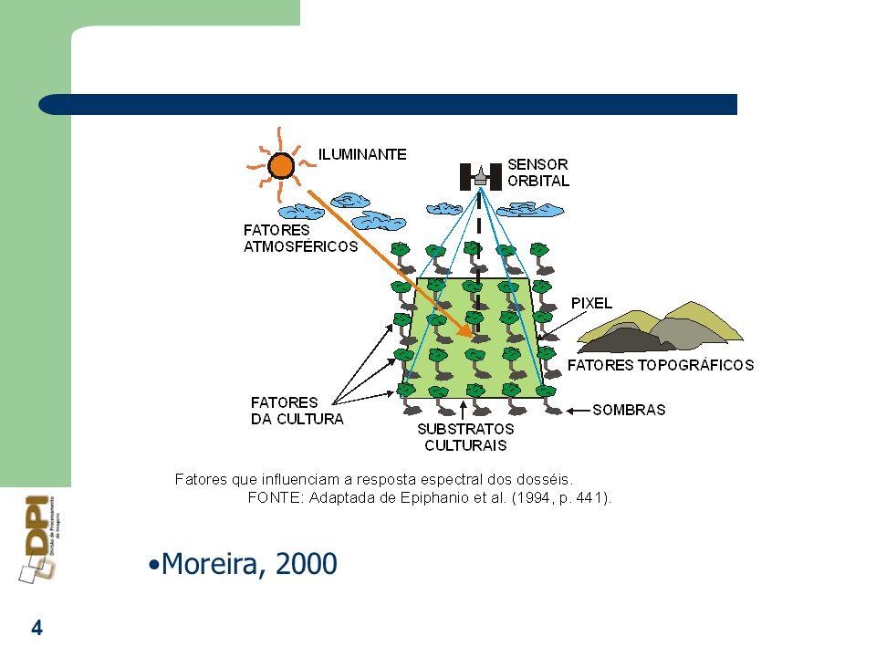 5 Dossel:arranjo de indivíduos de uma mesma espécie ou de espécies distintas num determinado espaço Características distintivas do dossel: ópticas (reflectância), estruturais (forma geométrica dos indivíduos, espaçamento, altura,etc), morfológicas (tipo e tamanho das folhas, galhos, frutos, flores,etc), geométricas( espaçamento entre fileiras, curvas de nível, etc.), fenológica parâmetros ambientais (temperatura, umidade relativa, velocidade do vento e precipitação).