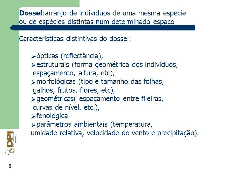 5 Dossel:arranjo de indivíduos de uma mesma espécie ou de espécies distintas num determinado espaço Características distintivas do dossel: ópticas (re