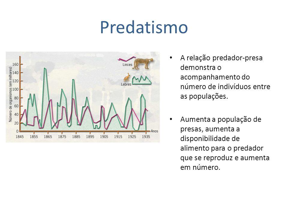 Predatismo A relação predador-presa demonstra o acompanhamento do número de indivíduos entre as populações. Aumenta a população de presas, aumenta a d