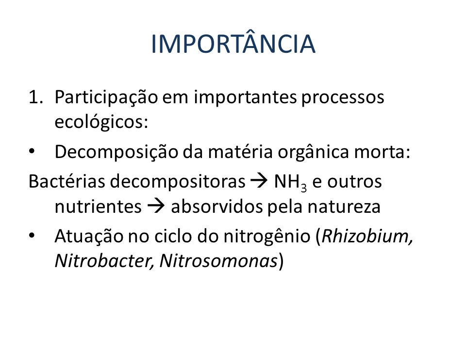 IMPORTÂNCIA 1.Participação em importantes processos ecológicos: Decomposição da matéria orgânica morta: Bactérias decompositoras NH 3 e outros nutrien