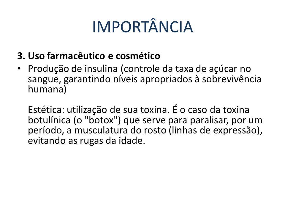 IMPORTÂNCIA 3. Uso farmacêutico e cosmético Produção de insulina (controle da taxa de açúcar no sangue, garantindo níveis apropriados à sobrevivência