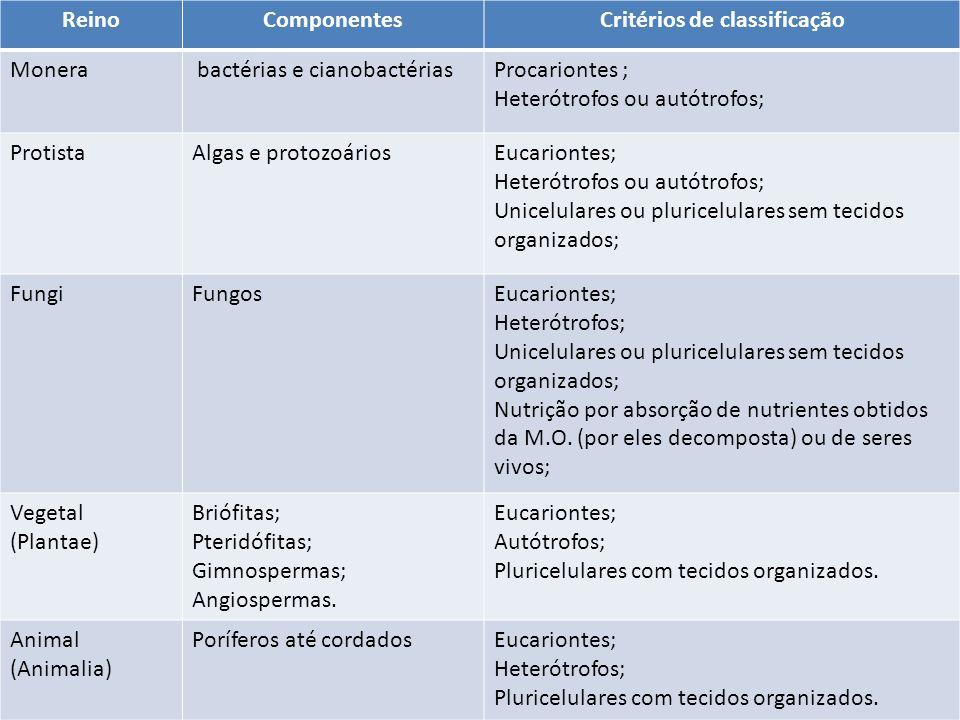 ReinoComponentesCritérios de classificação Monera bactérias e cianobactériasProcariontes ; Heterótrofos ou autótrofos; ProtistaAlgas e protozoáriosEuc