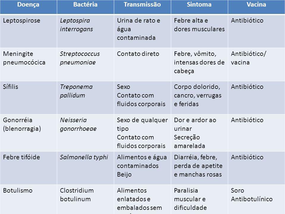 DoençaBactériaTransmissãoSintomaVacina LeptospiroseLeptospira interrogans Urina de rato e água contaminada Febre alta e dores musculares Antibiótico M