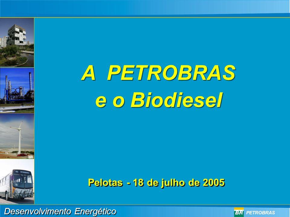 Desenvolvimento Energético PETROBRAS Biodiesel: ganhos ambientais Benefícios Ambientais Redução da poluição nas grandes cidades Redução de 78% das emissões de CO 2 Eliminação das emissões de enxofre Diminuição das emissões de CO Ligeiro aumento nas emissões de NOx