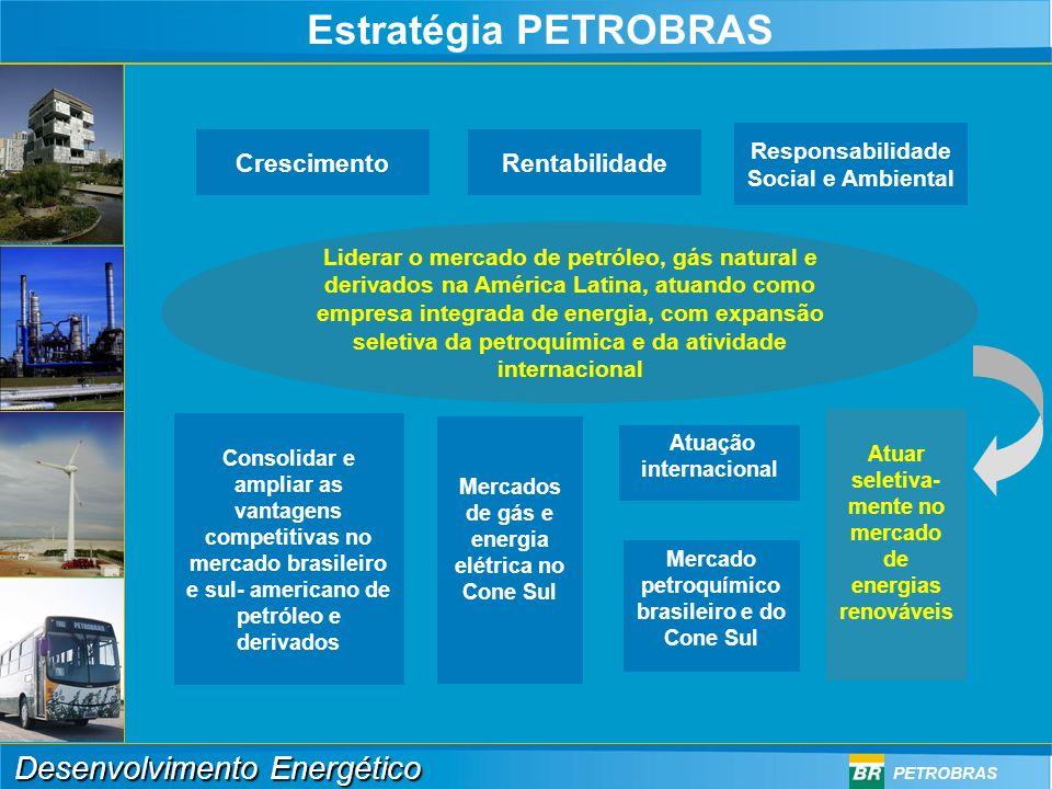 Desenvolvimento Energético PETROBRAS (*) Toda gasolina comercializada no Brasil tem 25% de álcool ÁLCOOL 8,8% SUBSTITUIÇÃO POR BIODIESEL 2 a 5% 1,1 a 2,8% Parcela do Álcool 6,6 + 8,8 15,4% Matriz Atual de Combustíveis Veiculares