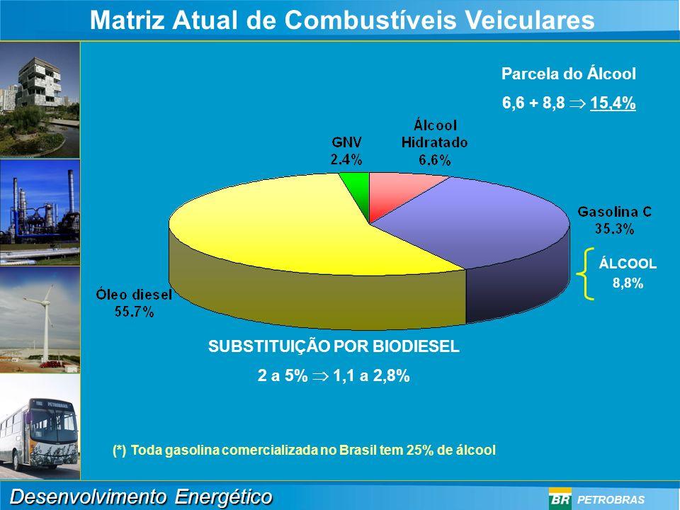 Desenvolvimento Energético PETROBRAS Consumo de Derivados do Petróleo e Álcool 0 100 200 300 400 500 600 700 19701972197419761978198019821984198619881990 1992199419961998 2000 Mil bpd Gases Liquefeitos Diesel Gasolina Óleos combustíveis Álcool QAV Nafta Outros Consumo de Combustíveis