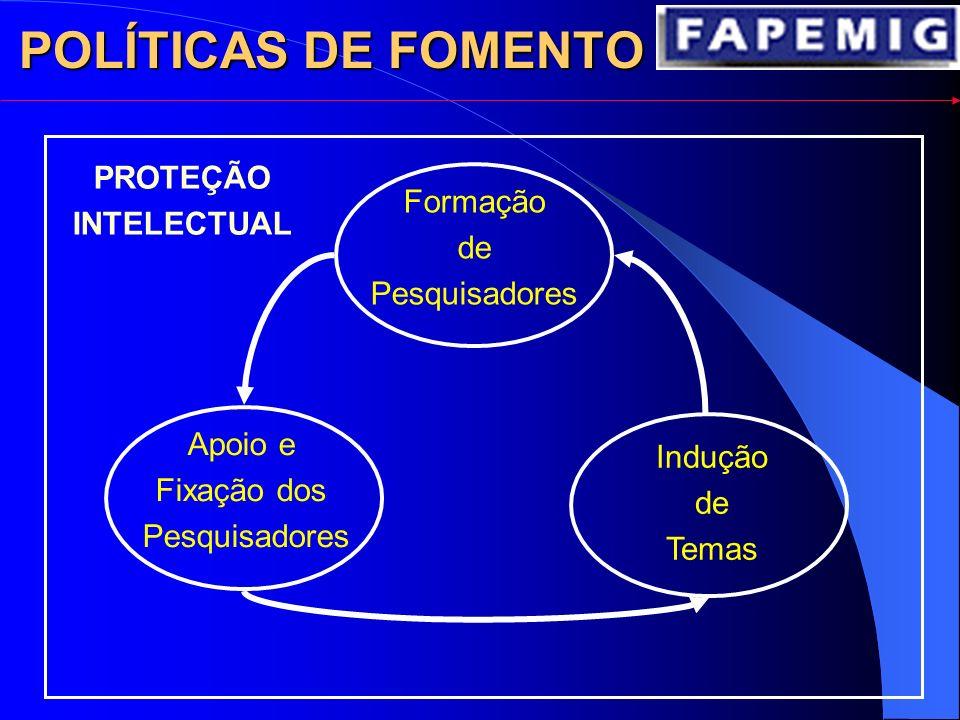 POLÍTICAS DE FOMENTO Formação de Pesquisadores Apoio e Fixação dos Pesquisadores Indução de Temas PROTEÇÃO INTELECTUAL