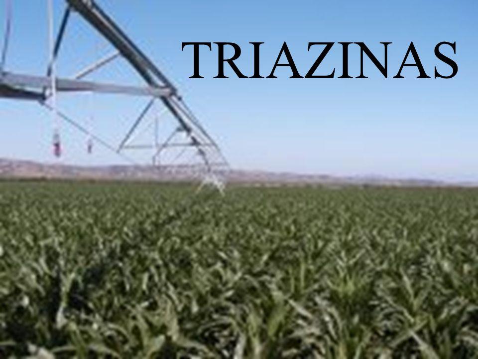 TRIAZINAS