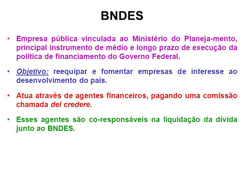 BNDES Empresa pública vinculada ao Ministério do Planeja-mento, principal instrumento de médio e longo prazo de execução da política de financiamento