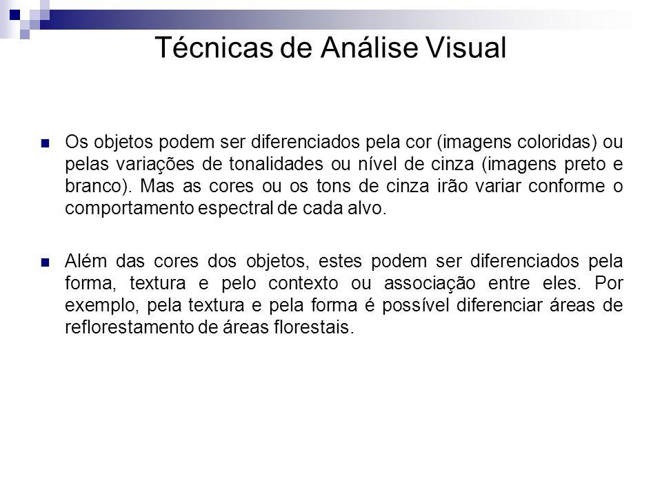 Técnicas de Análise Visual Os objetos podem ser diferenciados pela cor (imagens coloridas) ou pelas variações de tonalidades ou nível de cinza (imagen