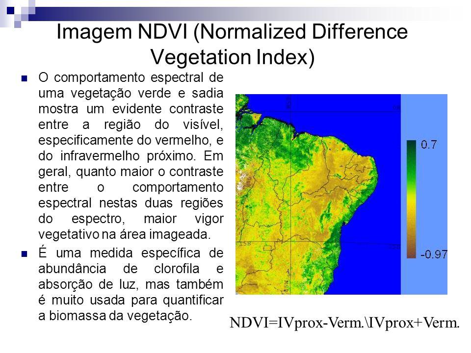 Imagem NDVI (Normalized Difference Vegetation Index) O comportamento espectral de uma vegetação verde e sadia mostra um evidente contraste entre a reg