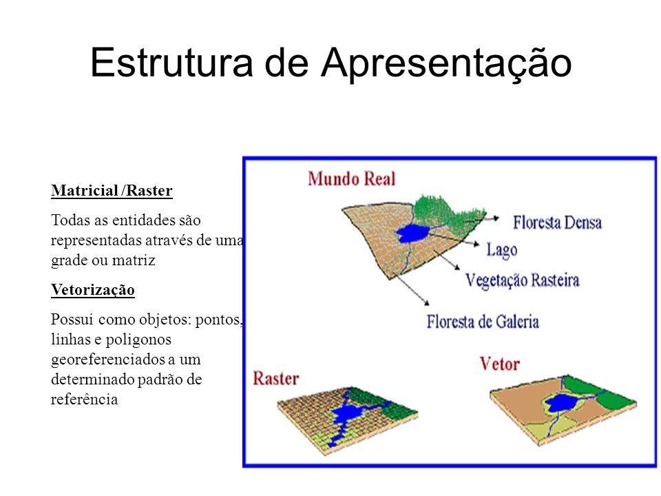 gdornele@posgrad.nce.ufrj.br Estrutura de Apresentação Matricial /Raster Todas as entidades são representadas através de uma grade ou matriz Vetorizaç