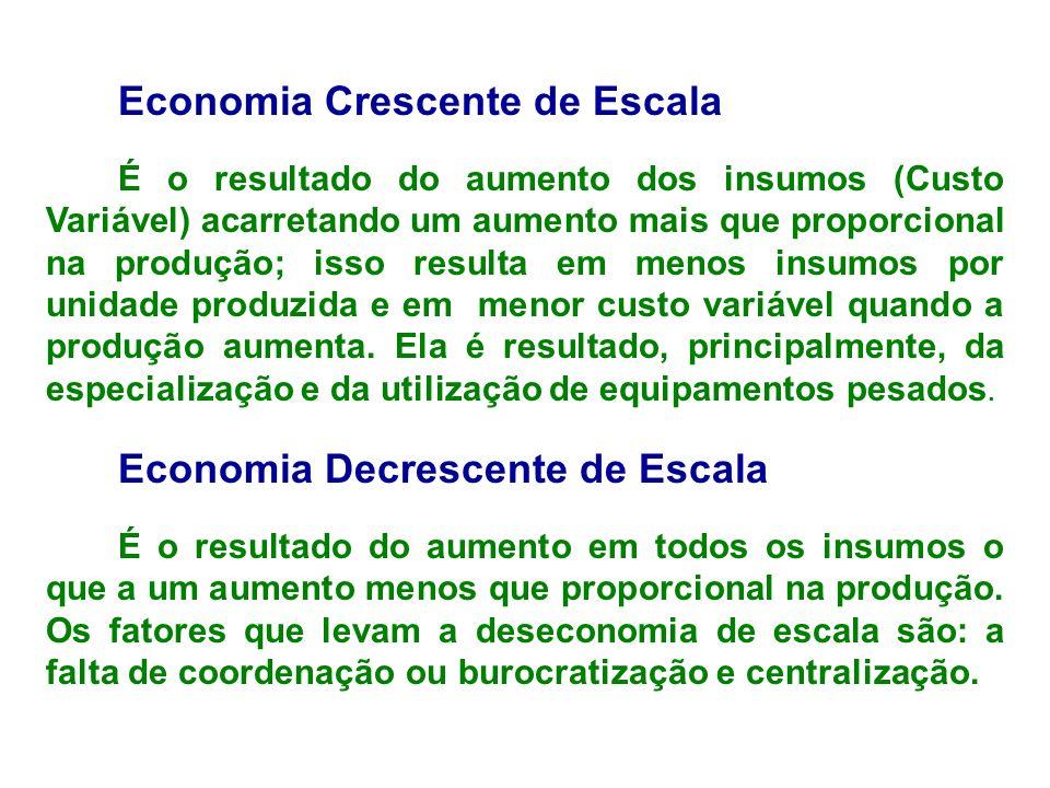Economia Crescente de Escala É o resultado do aumento dos insumos (Custo Variável) acarretando um aumento mais que proporcional na produção; isso resu