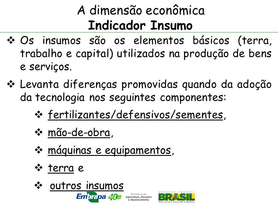 A dimensão econômica Indicador Insumo Os insumos são os elementos básicos (terra, trabalho e capital) utilizados na produção de bens e serviços. Levan