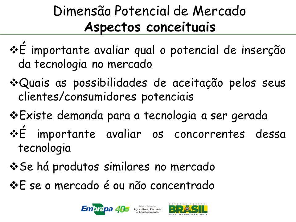 Dimensão Potencial de Mercado Aspectos conceituais É importante avaliar qual o potencial de inserção da tecnologia no mercado Quais as possibilidades