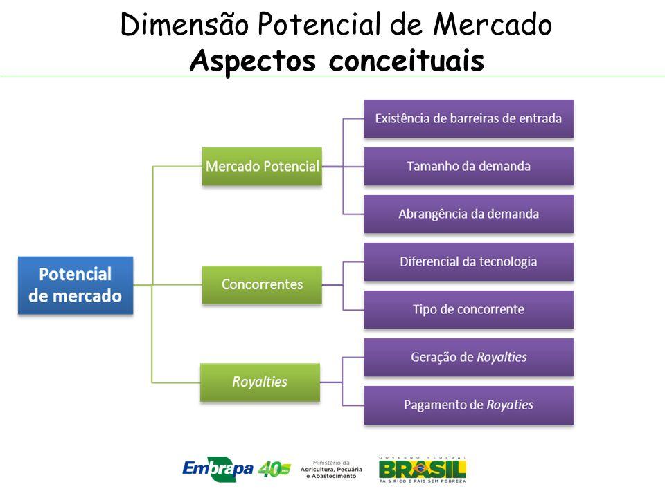 Dimensão Potencial de Mercado Aspectos conceituais