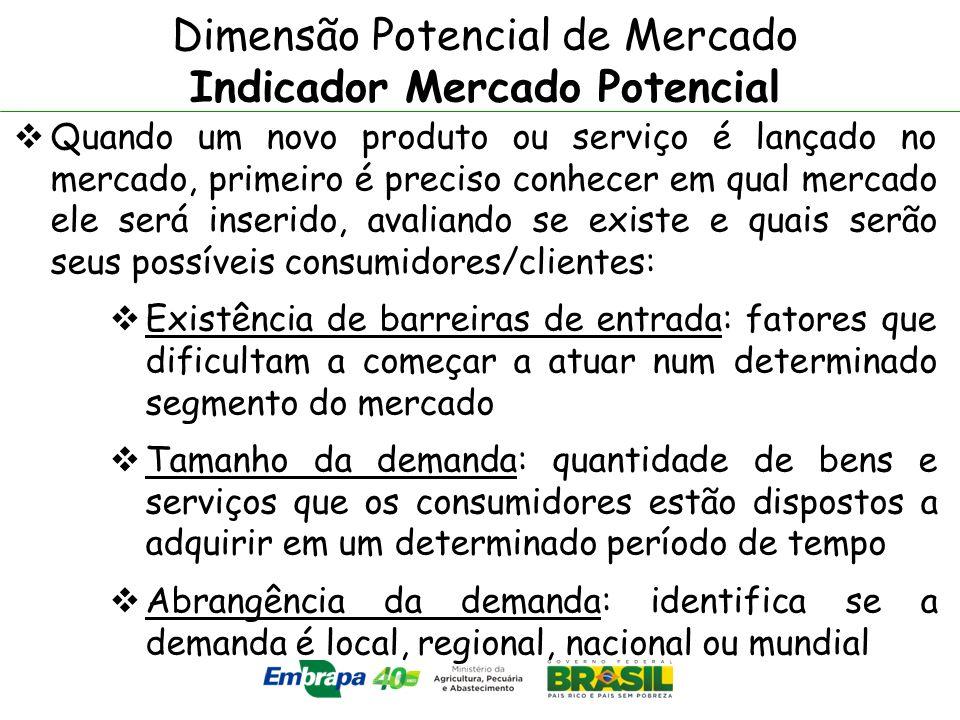 Dimensão Potencial de Mercado Indicador Mercado Potencial Quando um novo produto ou serviço é lançado no mercado, primeiro é preciso conhecer em qual
