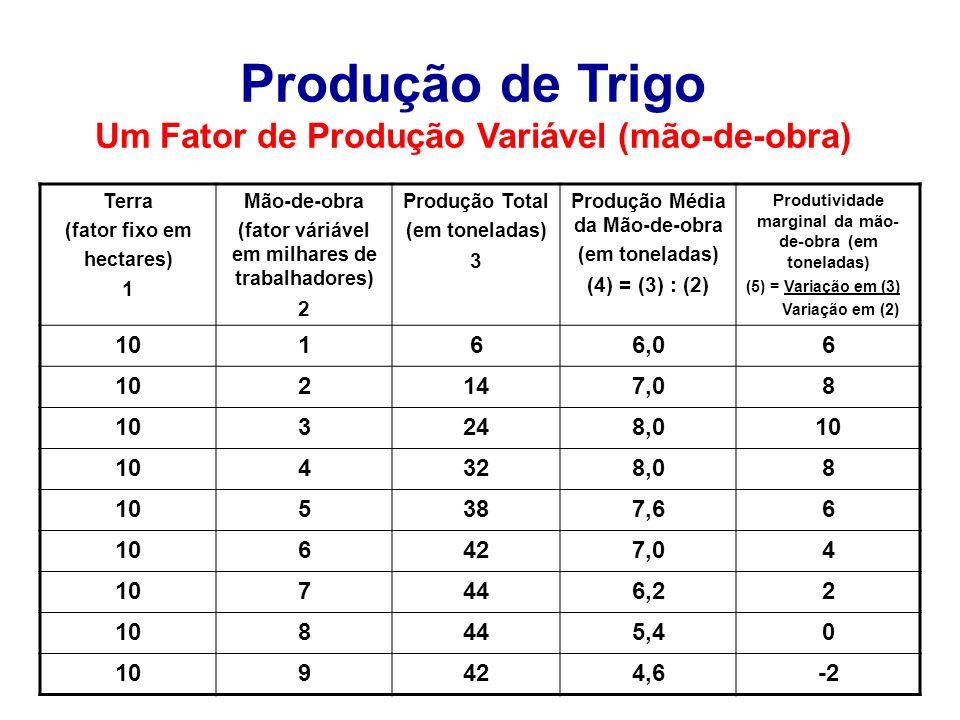 Produção de Trigo Um Fator de Produção Variável (mão-de-obra) Terra (fator fixo em hectares) 1 Mão-de-obra (fator váriável em milhares de trabalhadore