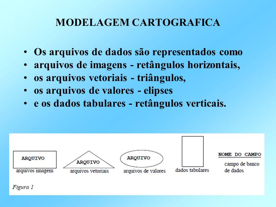 Os arquivos de dados são representados como arquivos de imagens - retângulos horizontais, os arquivos vetoriais - triângulos, os arquivos de valores - elipses e os dados tabulares - retângulos verticais.