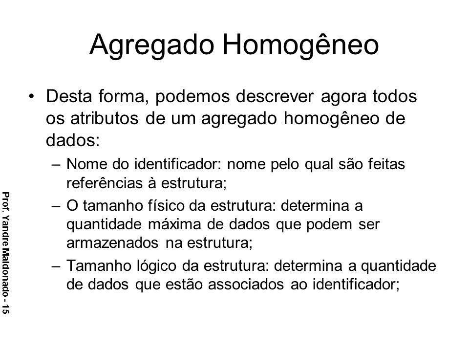 Agregado Homogêneo Desta forma, podemos descrever agora todos os atributos de um agregado homogêneo de dados: –Nome do identificador: nome pelo qual s