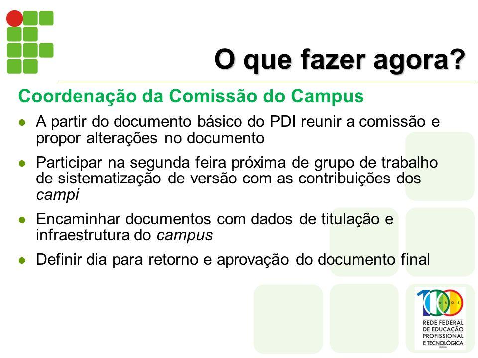 O que fazer agora? Coordenação da Comissão do Campus A partir do documento básico do PDI reunir a comissão e propor alterações no documento Participar