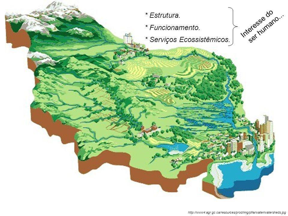 http://www4.agr.gc.ca/resources/prod/img/pfra/water/watersheds.jpg * Estrutura. * Funcionamento. * Serviços Ecossistêmicos. Interesse do ser humano...