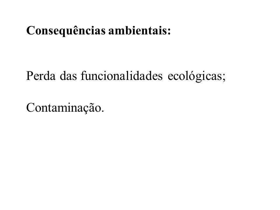 Consequências ambientais: Perda das funcionalidades ecológicas; Contaminação.