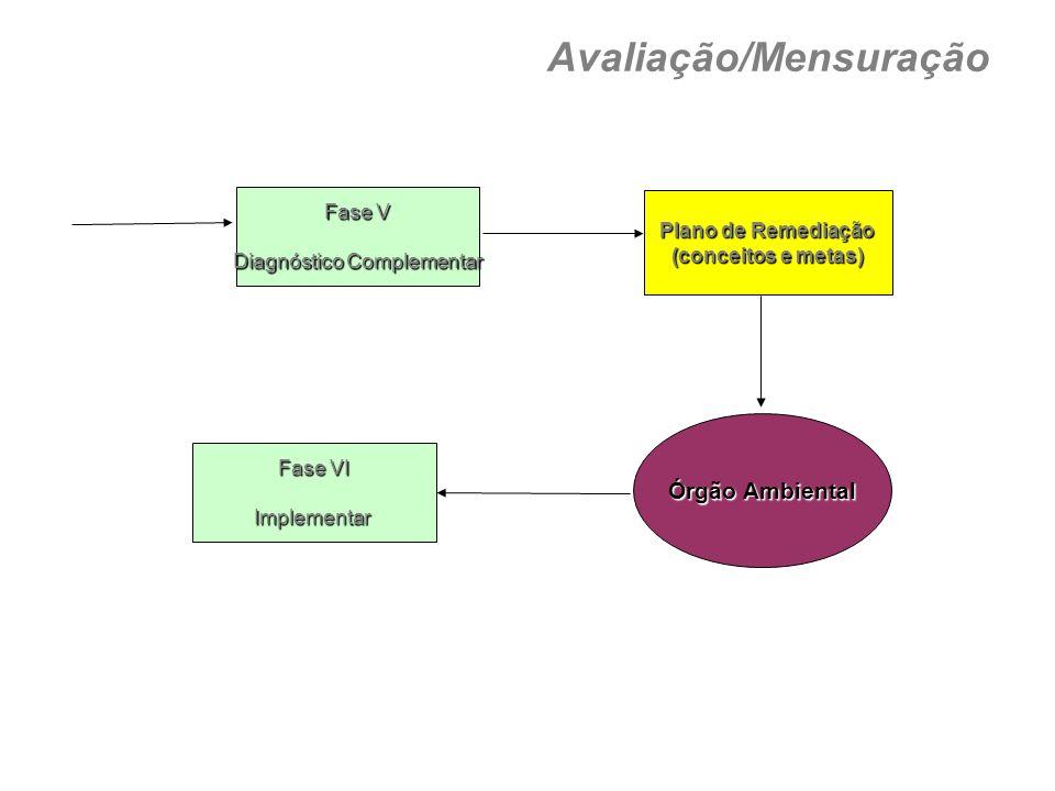 Fase V Diagnóstico Complementar Plano de Remediação (conceitos e metas) Órgão Ambiental Fase VI Implementar