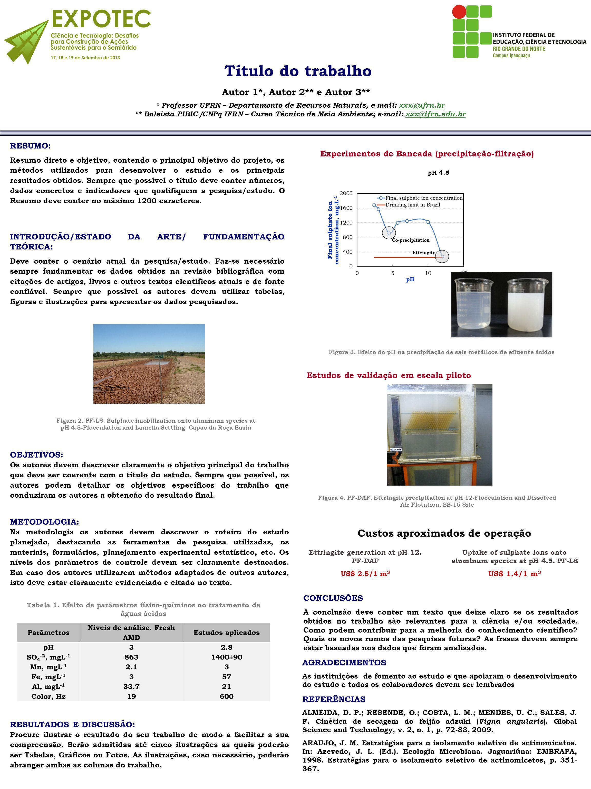 Estudos de validação em escala piloto RESUMO: Resumo direto e objetivo, contendo o principal objetivo do projeto, os métodos utilizados para desenvolver o estudo e os principais resultados obtidos.