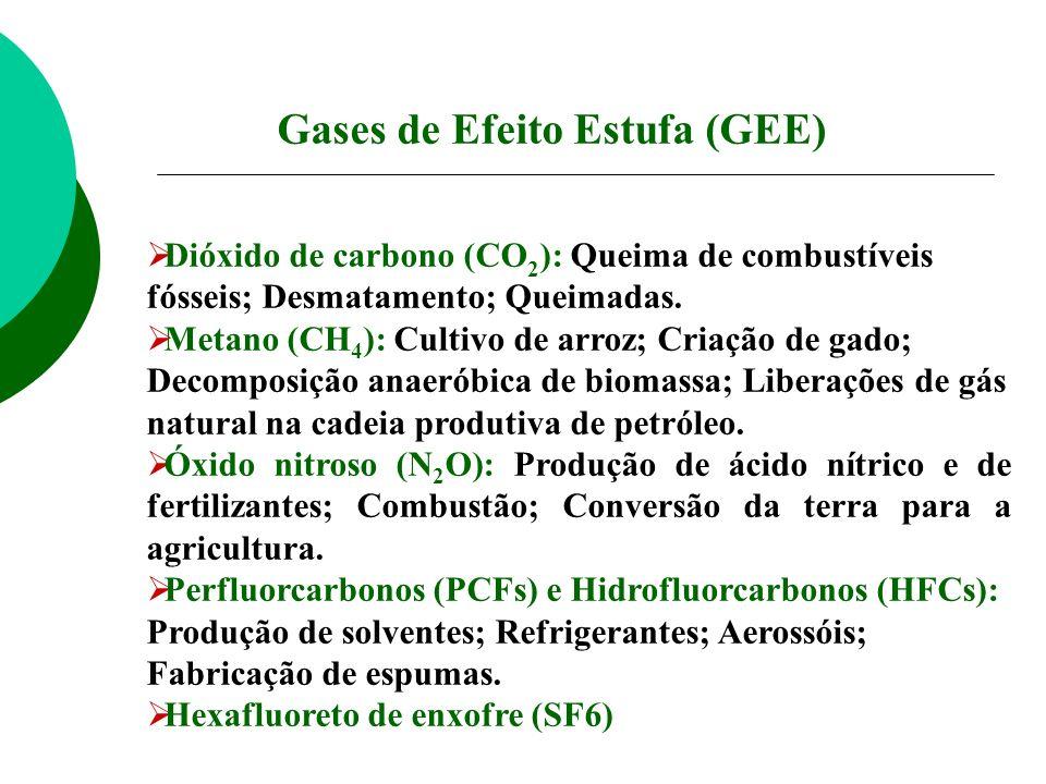 Dióxido de carbono (CO 2 ): Queima de combustíveis fósseis; Desmatamento; Queimadas. Metano (CH 4 ): Cultivo de arroz; Criação de gado; Decomposição a