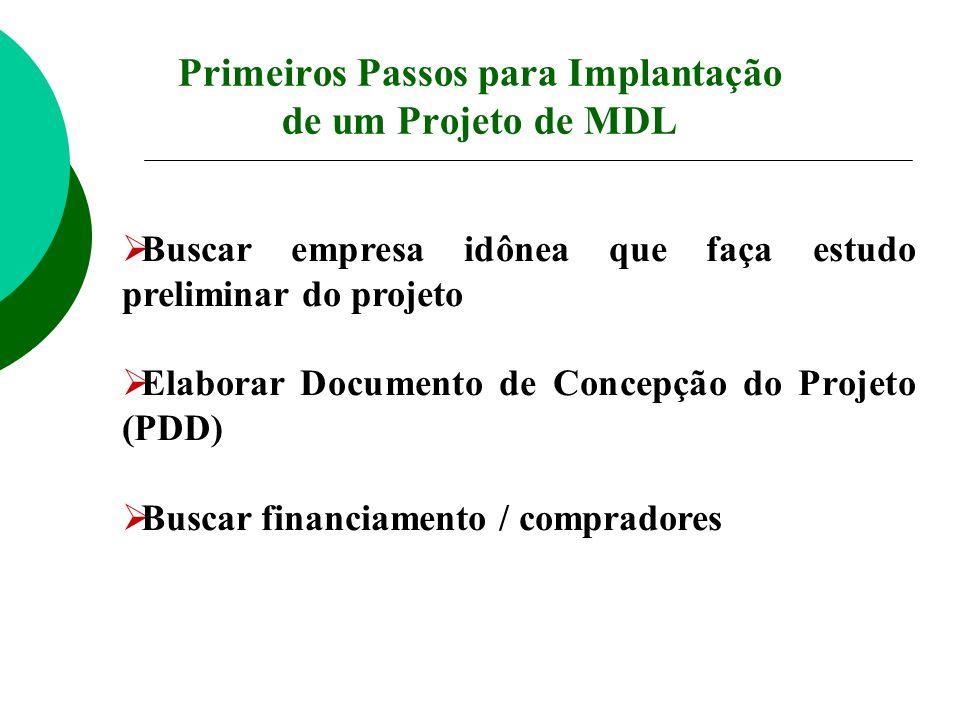 Buscar empresa idônea que faça estudo preliminar do projeto Elaborar Documento de Concepção do Projeto (PDD) Buscar financiamento / compradores Primei