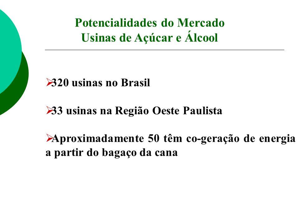 320 usinas no Brasil 33 usinas na Região Oeste Paulista Aproximadamente 50 têm co-geração de energia a partir do bagaço da cana Potencialidades do Mer