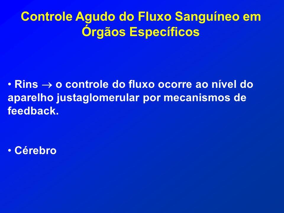 Controle Agudo do Fluxo Sanguíneo em Órgãos Específicos Rins o controle do fluxo ocorre ao nível do aparelho justaglomerular por mecanismos de feedbac
