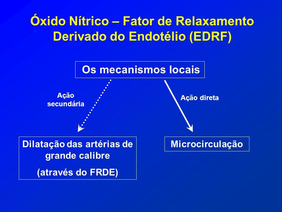 Óxido Nítrico – Fator de Relaxamento Derivado do Endotélio (EDRF) Os mecanismos locais Ação direta Ação secundária Dilatação das artérias de grande ca