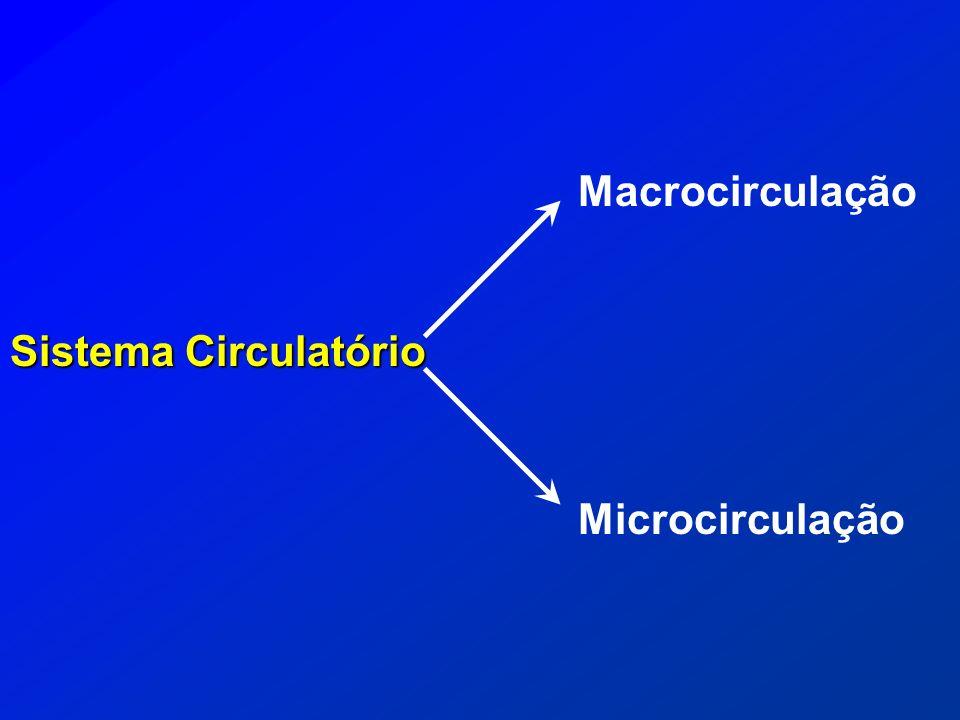 Sistema Circulatório Macrocirculação Microcirculação