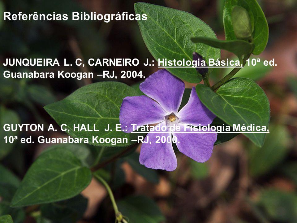 Referências Bibliográficas JUNQUEIRA L. C, CARNEIRO J.: Histologia Básica, 10ª ed. Guanabara Koogan –RJ, 2004. GUYTON A. C, HALL J. E.: Tratado de Fis
