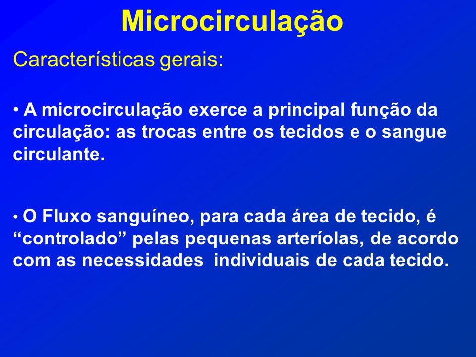 Características gerais: A microcirculação exerce a principal função da circulação: as trocas entre os tecidos e o sangue circulante. O Fluxo sanguíneo