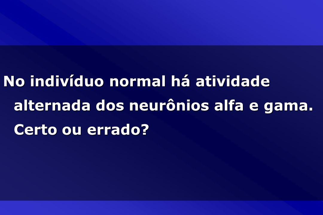 No indivíduo normal há atividade alternada dos neurônios alfa e gama. Certo ou errado?