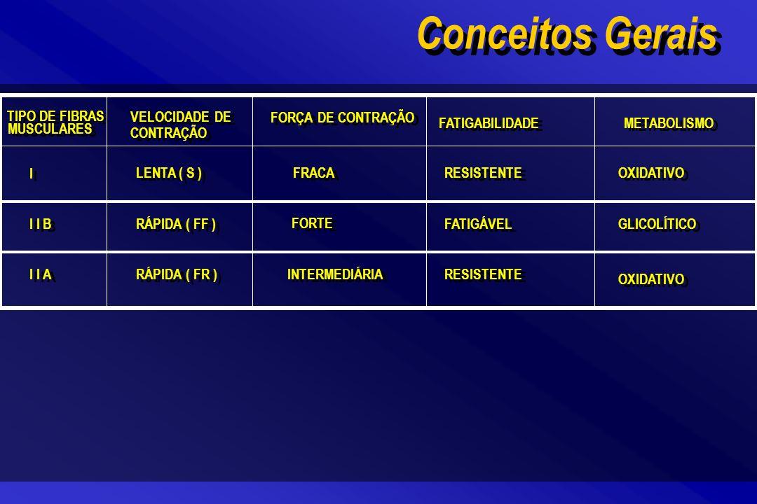 TIPO DE FIBRAS MUSCULARES Conceitos Gerais VELOCIDADE DE CONTRAÇÃO FORÇA DE CONTRAÇÃO FATIGABILIDADE METABOLISMO I I LENTA ( S ) FRACA RESISTENTE OXID